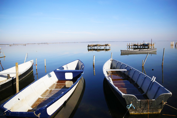 600x400 foto lago di lesina 13
